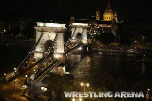 Budapest2013WorldGrecoRomanWrestlingChampionshipFinale96kgMelnikovAleksanyan.jpg
